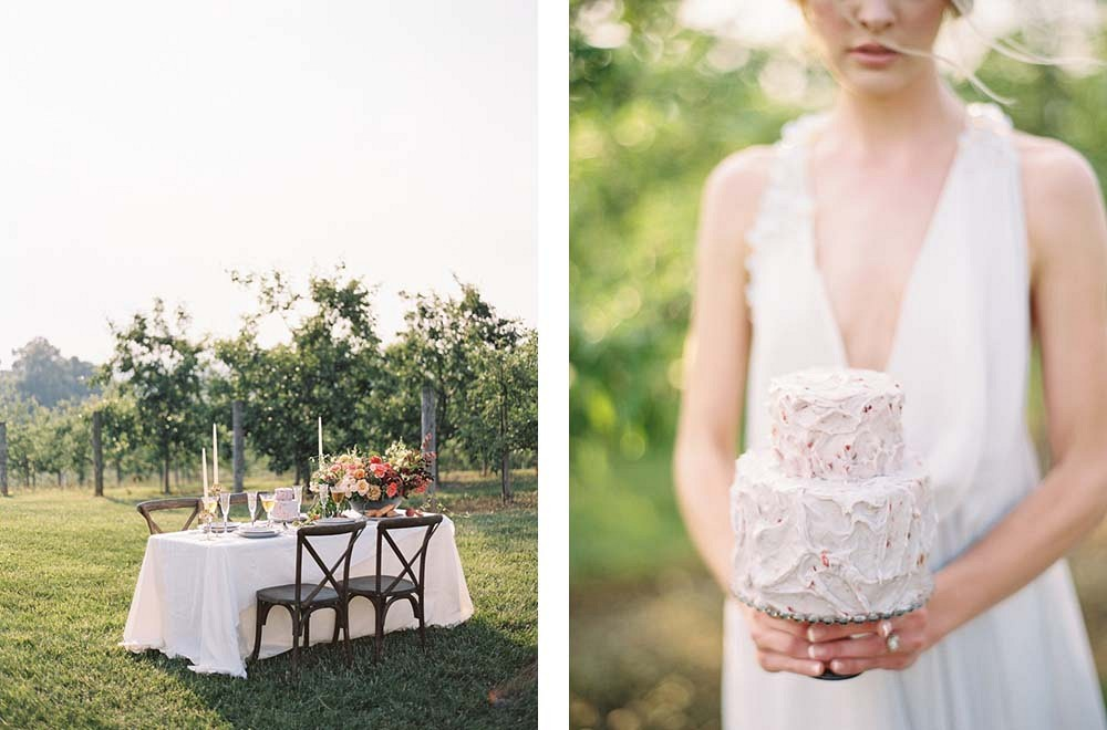 Vineyard Wedding with a Vine Covered Arbor by Chris Isham Photography | Wedding Sparrow