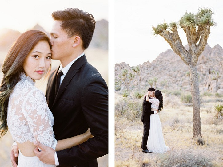 Joshua Tree Anniversary with Two Piece Wedding Dress