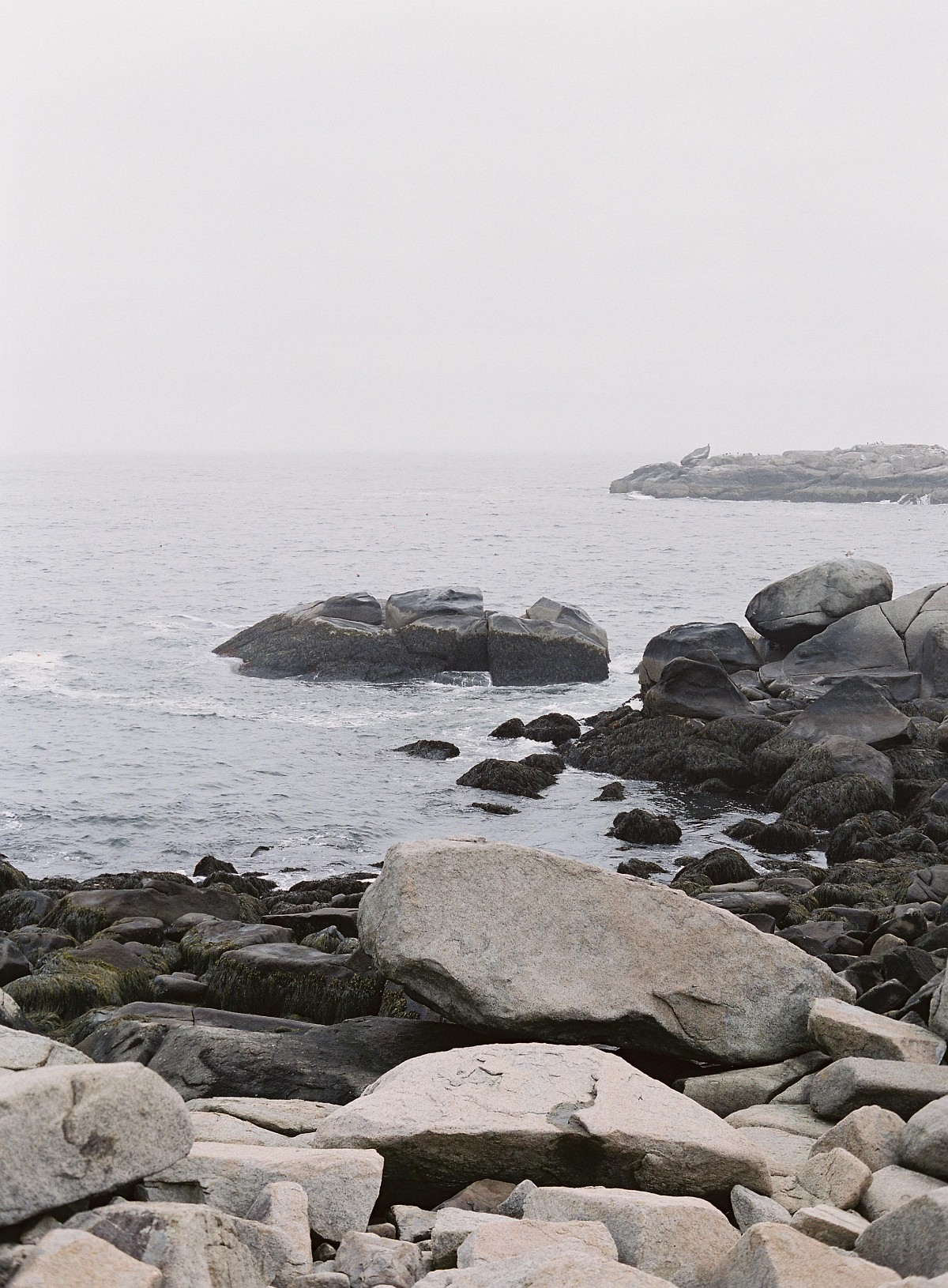 Michelle and Matt's Cliffside Wedding in Maine
