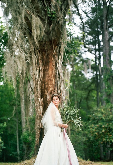 Song of Songs Photography