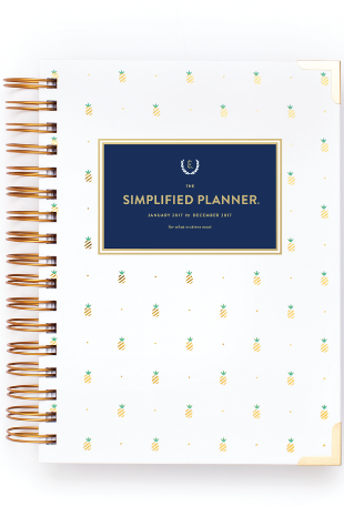 2017 CALENDAR DAILY SIMPLIFIED PLANNER