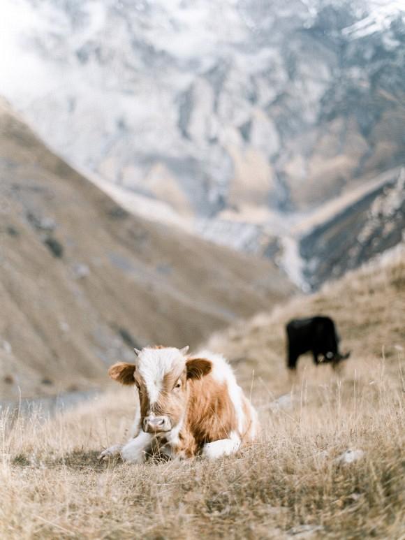 ETHEREAL MOUNTAIN BRIDAL INSPIRATION