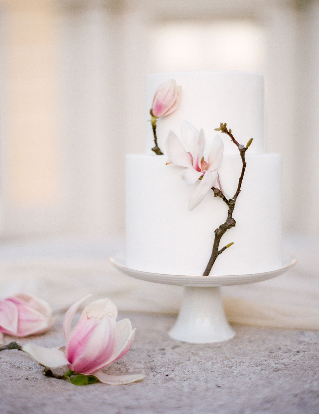 Magnolia - Seasonal Florals to Use in Your Bouquet