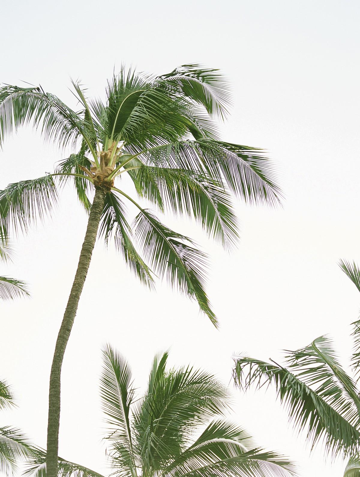 Hawaii Honeymoon Ideas