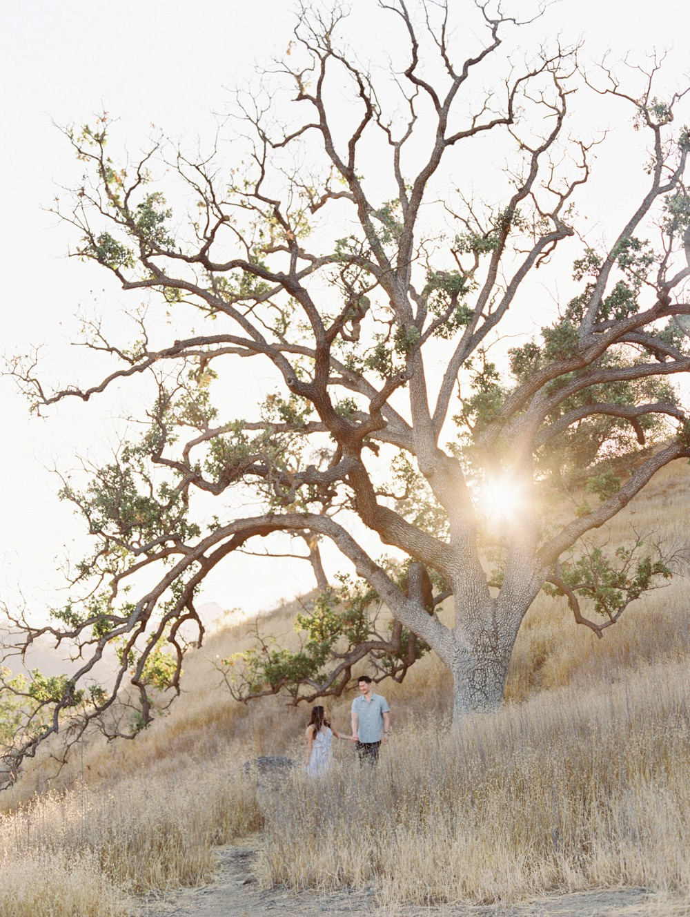 Bethany and Enbo's Southern California Engagement
