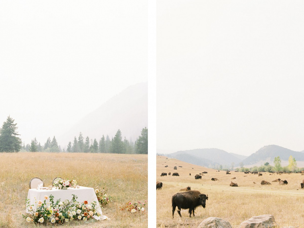 Perfect Elopement at the Smokey Spanish Creek