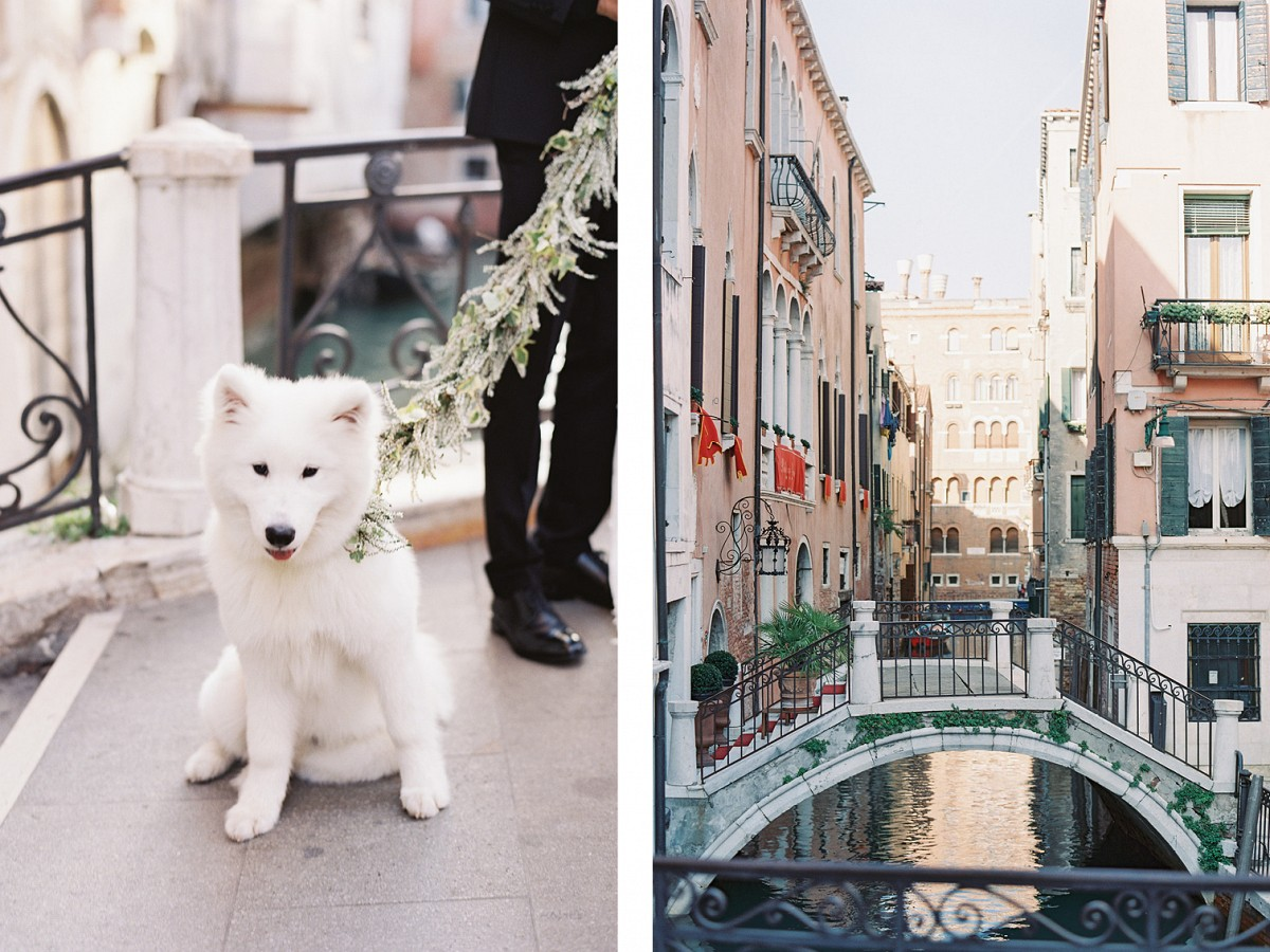 Elegant Venice Wedding Editorial with Cute Fluffy Pup!