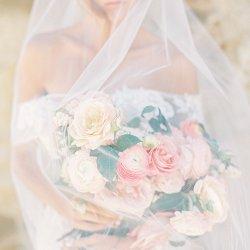 Alba Rose Photography