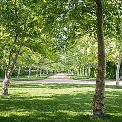 Kestrel Park